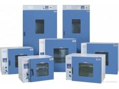 CRS-LHX立式鼓风干燥箱